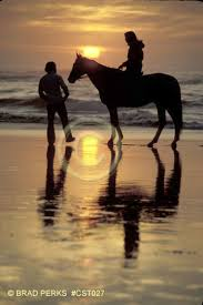couple and horse on beach